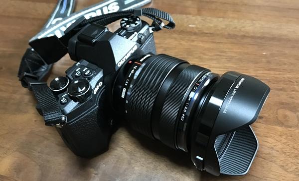 らひ子のプロフィール(ミラーレスカメラ)