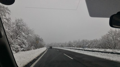3月下旬の東富士五湖有料道路(山中湖IC周辺)の様子
