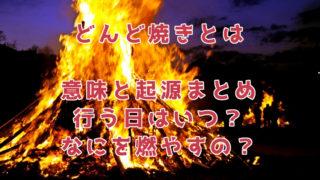 どんど焼きとは。意味や起源、いつ行うの?燃やしていいものは
