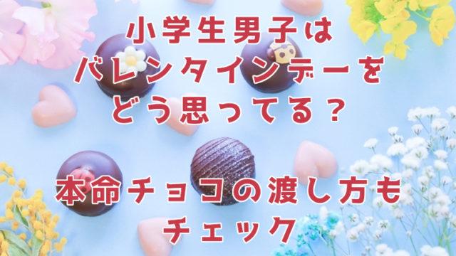 バレンタインデーの小学生男子のとらえ方。本命チョコの渡し方は?