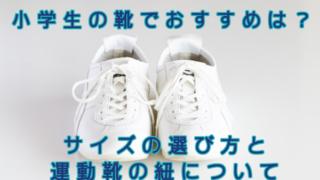 小学生の靴でおすすめは?サイズの選び方と運動靴の紐について