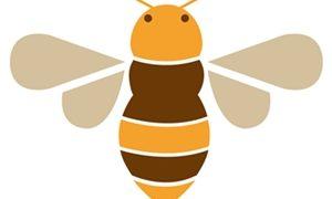蜂の巣駆除をする時期は?巣の種類を画像で解説・できるまでの流れ