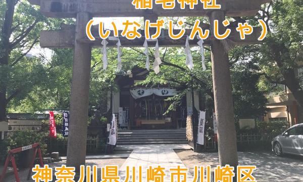 稲毛神社で御朱印をいただく。病気治癒の狛犬も【神奈川県川崎市川崎区】
