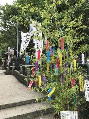 海南神社の七夕飾り