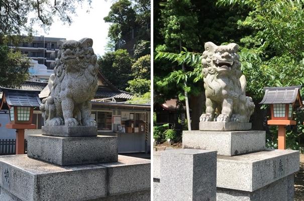 瀬戸神社の狛犬