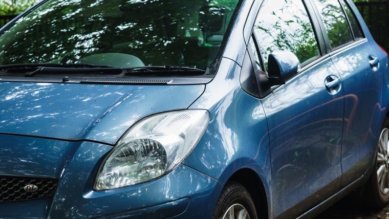 車のボンネットに猫バンバン